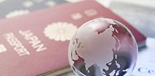 ビザ申請の流れ / 必要書類 / 料金